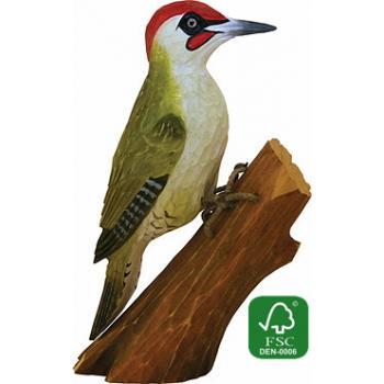 Fugle i træ - Grønspætte