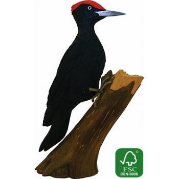 Fugle i træ - Sortspætte